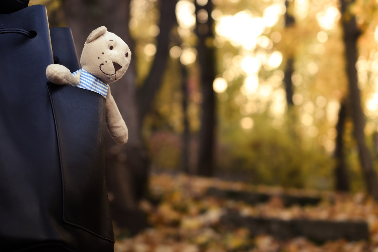 bear-1802370_1280